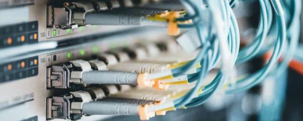 câble réseau